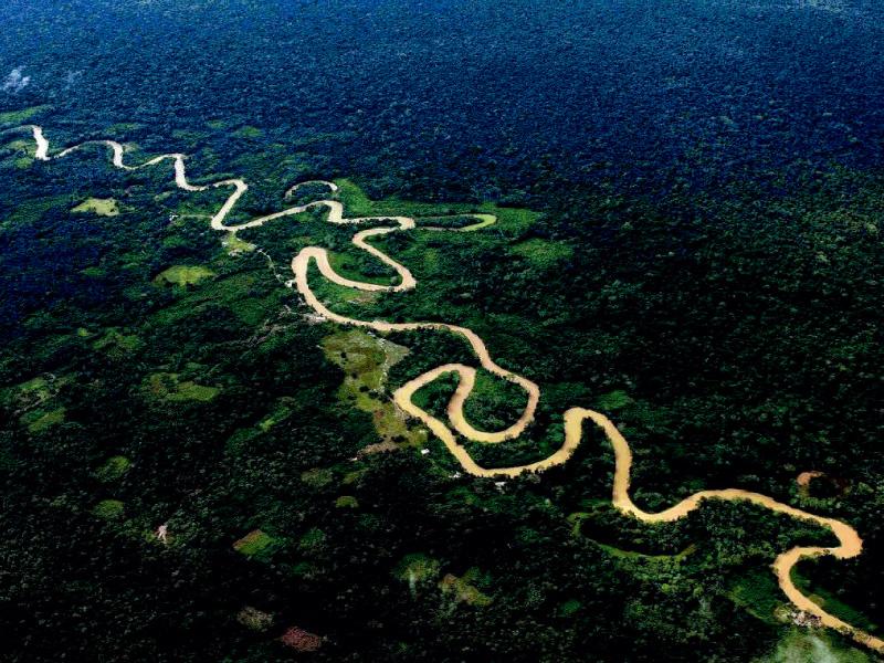 Acciones frente al Cambio climático que no pueden esperar en la Amazonía peruana