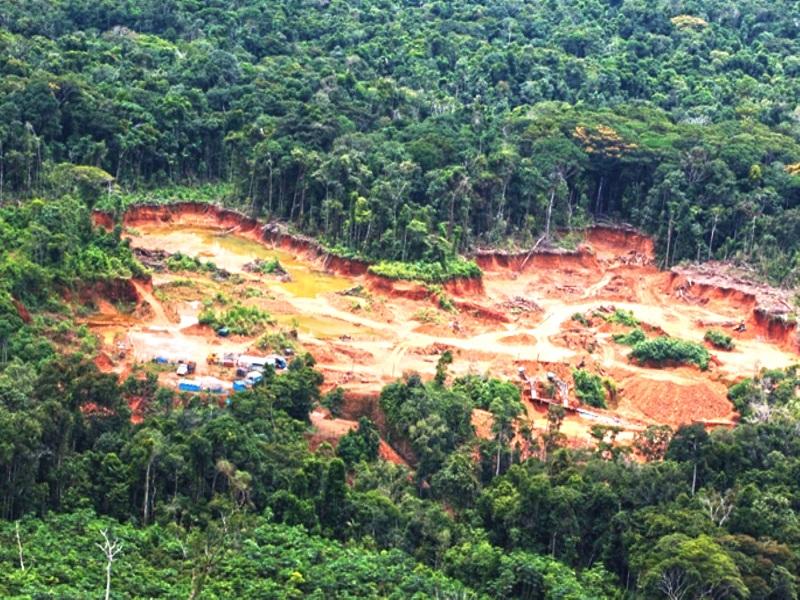 El CENEPA está amenazado por la minería ilegal y se debería detener urgente