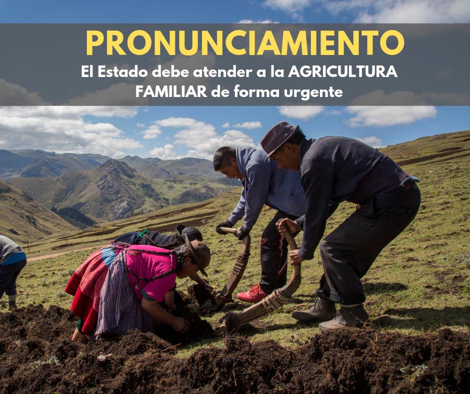 Pronunciamiento: El Estado debe invertir en la Agricultura Familiar