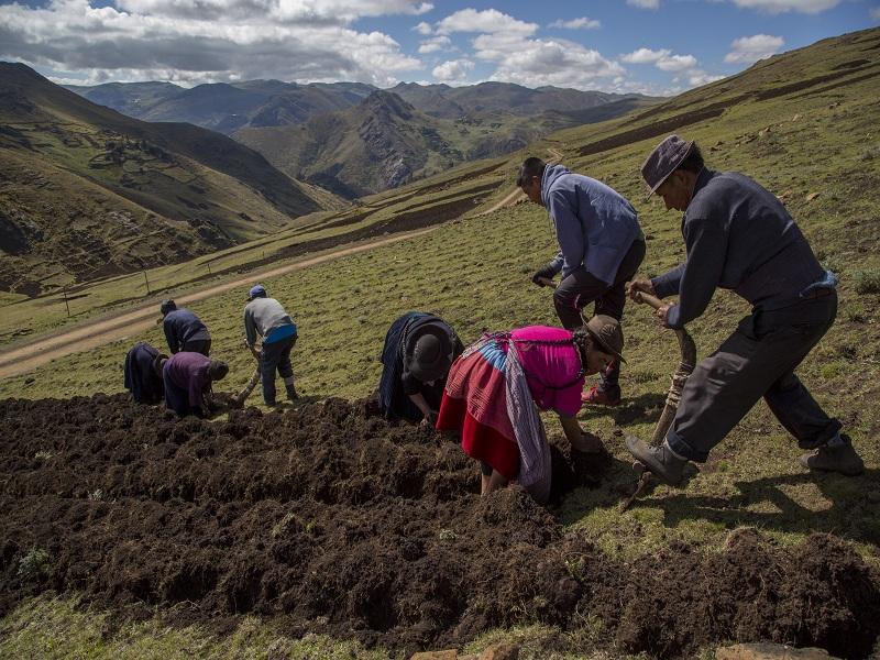 En 5 puntos: ¿Por qué ampliar a 20 años el régimen laboral agrario es perjudicial para los trabajadores?