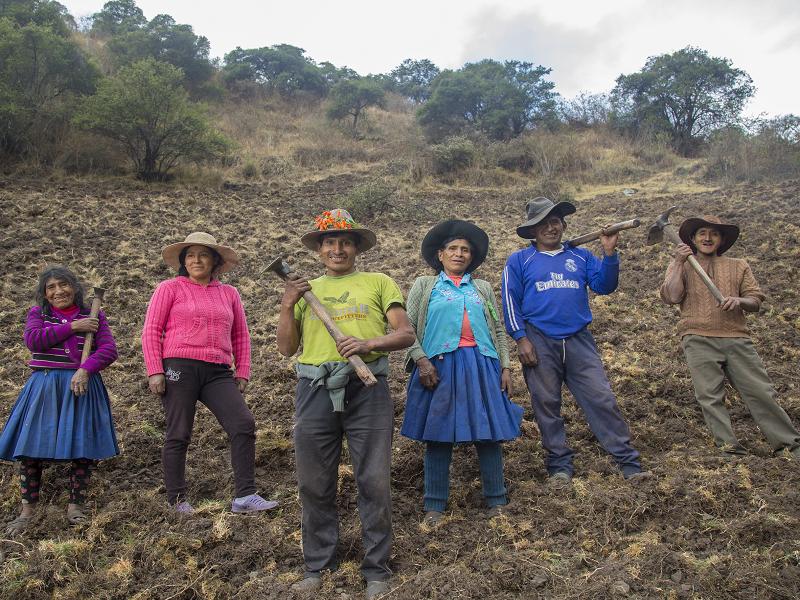 Conoce cómo la agroecología nos ayuda frente a problemas de salud y al cambio climático