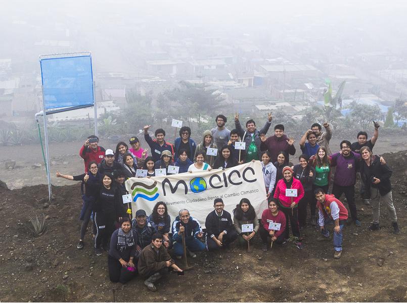 Activistas del MOCICC plantaron 100 árboles de Tara en Lomas de Primavera