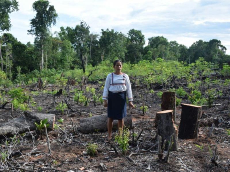 Pueblos indígenas demandan a los Estados reconocer sus derechos sobre la tierra