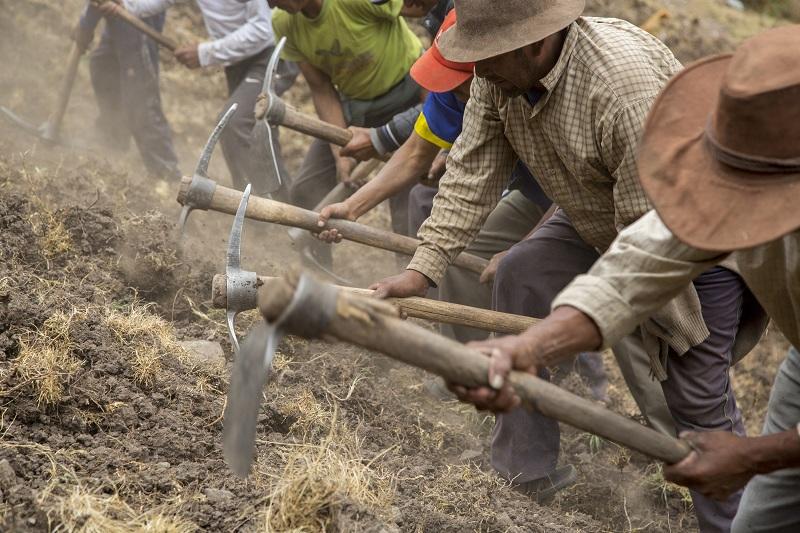 [VIDEOS] Los agricultores están luchando por proteger el Planeta