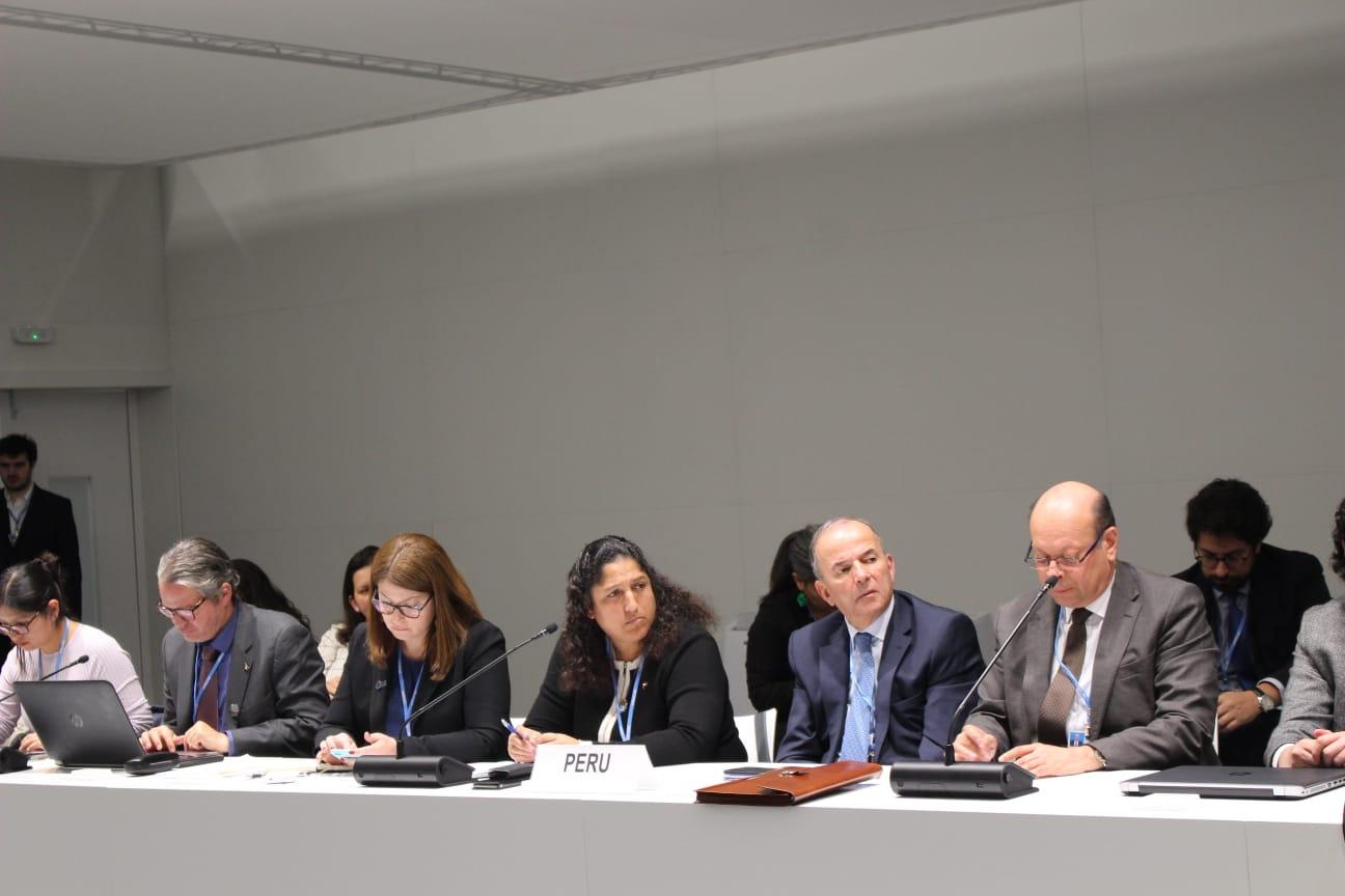 COP25: Negociaciones sin definir y varios pendientes informó Ministra Fabiola Muñoz