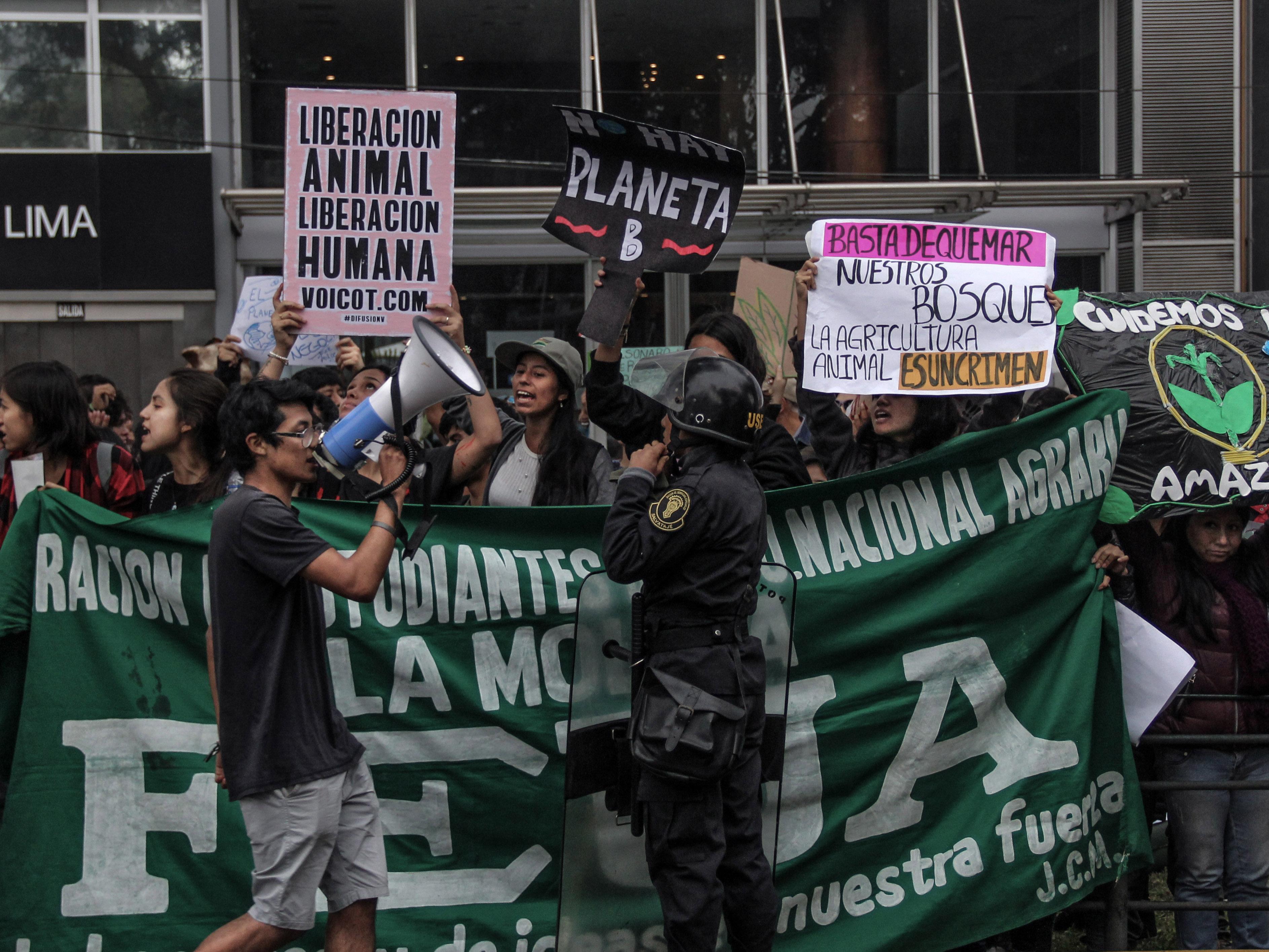 ¡No más incendios¡ Activistas organizan plantón frente a la Embajada de Australia en Lima