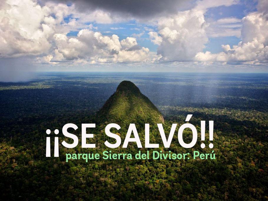 ¡Se salvó ! Poder Judicial falla en contra de exploración petrolera en parque Sierra del Divisor: Perú