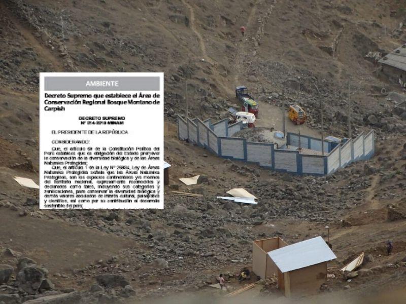 VMT: Invasión e inacción en Sistema de Lomas de Lima
