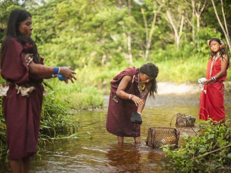 Vulnerabilidad y prevención indígena en la Amazonía en tiempos de COVID-19