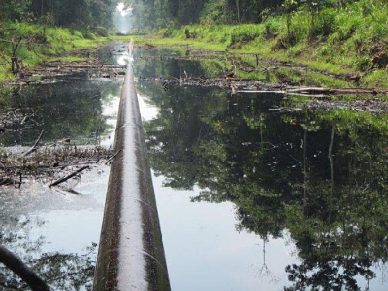 En los últimos diez años ocurrieron 424 derrames de petróleo en la Amazonía