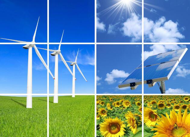 Participa del Encuentro Internacional de Energías Renovables