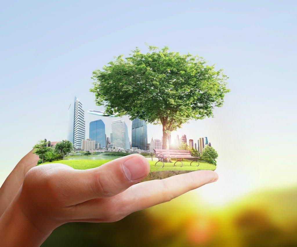 transición-ecologica