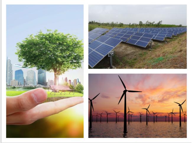La transición ecológica para hacerle frente a la Emergencia climática