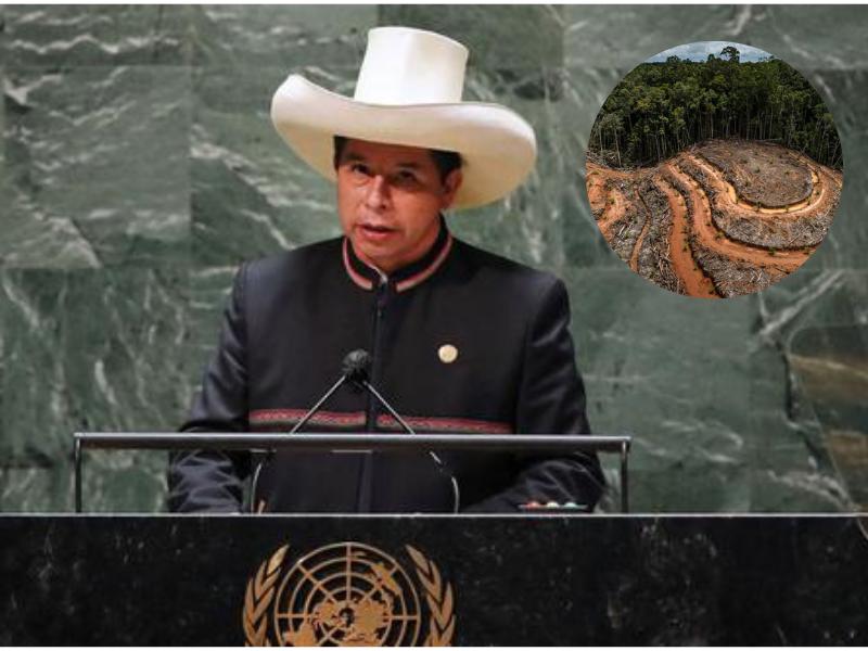 Presidente Castillo se compromete a declarar Emergencia climática ante la ONU